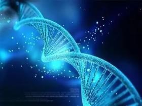 基因测序要多少钱?