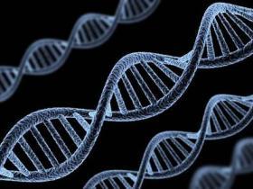 甲基化和肿瘤有什么关系?