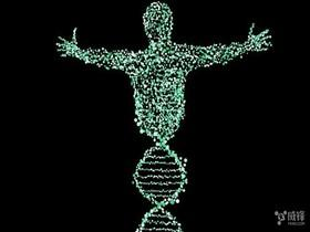 人有多少个基因