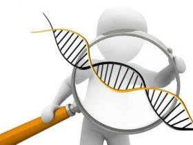 易感基因测序和甲基化基因测序的高危分别代表什么意思?