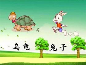 龟兔赛跑悖论说明了什么?